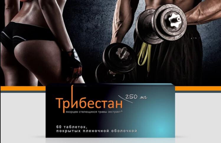 Трибестан Опыт применения препарата спортсменами