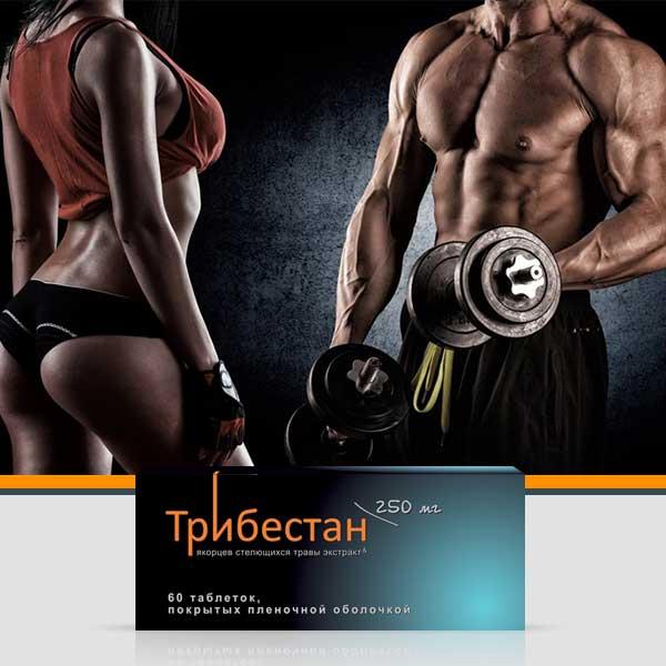Трибестан - опыт применения препарата спортсменами, результаты в пауэрлифтинге